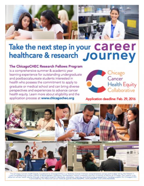 Research Fellows Flyer