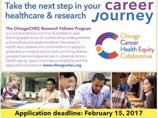 Research Fellows 2017 flyer