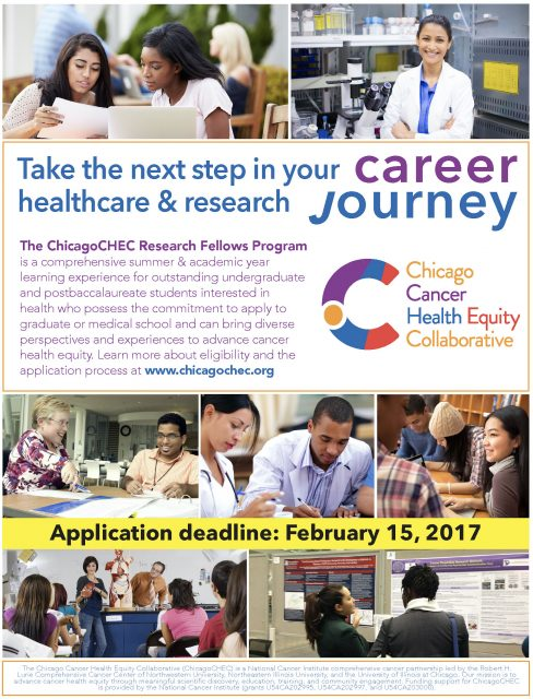 Research Fellows 2017 flyer